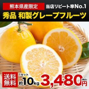 ご贈答にも 本場・熊本県産秀品和製グレープフルーツ(河内晩柑...