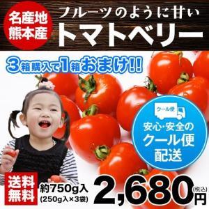 送料無料 3箱買えば1箱おまけ 熊本県八代・玉名産 話題のトマトベリー約750g 約250g×3袋入り トマト名産地から産地直送! 2月中旬-3月上旬頃より順次出荷【kk】