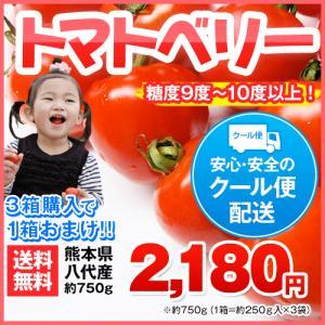 【送料無料】3箱分買えば1箱おまけ 熊本県八代・玉名産 話題のトマトベリー約750g(約250g×3袋入り)産地直送 10-14営業日以内に出荷(土日・祝日除く)【kk】