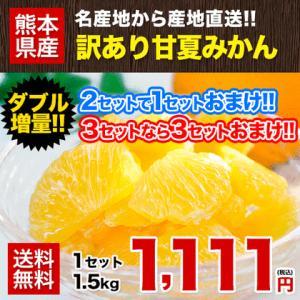 送料無料 甘夏みかん1.5kg 甘夏の名産地熊本県産 自家用...
