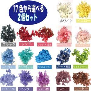 プリザーブドフラワー ハーバリウムの材料 10色から選べる4色 フラワーショップ アイズ