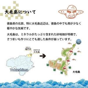 丁井 お百姓さんが作った スイートポテト 16個入|kumano-nakatani|06