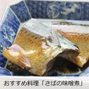 日本酒 濃醇 冷酒 天吹 純米大吟醸 バナナ酵母 本生 720ml|kumanonamida|11
