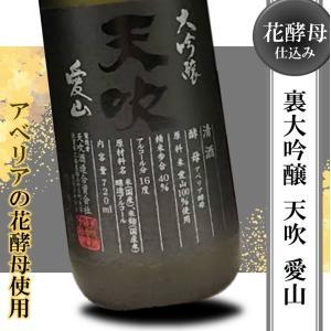 日本酒 フルーティー 辛口 冷酒 天吹 裏 大吟醸 愛山 720ml アベリア|kumanonamida