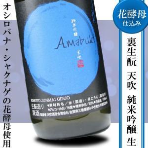 日本酒 フルーティー 甘口 冷酒 天吹 裏 生もと 純米吟醸 720ml アベリア|kumanonamida
