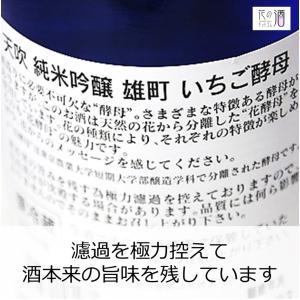 日本酒 辛口 冷酒 天吹 純米吟醸 生酒 いちご酵母 720ml 花酵母|kumanonamida|02