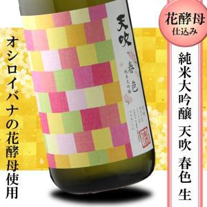 日本酒 フルーティー 冷酒 天吹 純米大吟醸 本生 春色 720ml オシロイバナ|kumanonamida