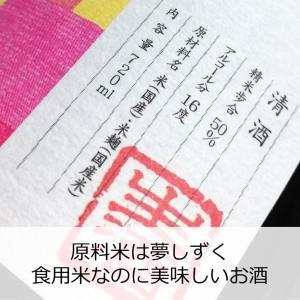 日本酒 フルーティー 冷酒 天吹 純米大吟醸 本生 春色 720ml オシロイバナ|kumanonamida|02