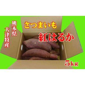 さつまいも 紅はるか (べにはるか) 熊本大津特産 5kg