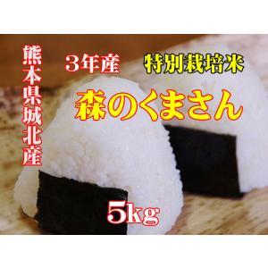 令和元年産 熊本県城北産 特別栽培米 森のくまさん 5kg 玄米 精米