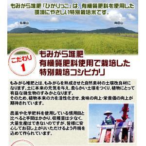 ((新米))新潟ひかりっこ 新潟県産 特別栽培米 ひかりっこ米 5kg 29年度産|kumazou2|03