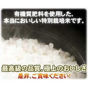 ((新米))新潟ひかりっこ 新潟県産 特別栽培米 ひかりっこ米 5kg 29年度産|kumazou2|05