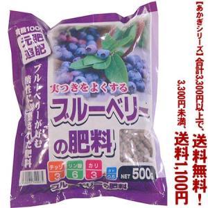 ((あかぎシリーズ))あかぎ園芸 ブルーベリーの肥料 500g