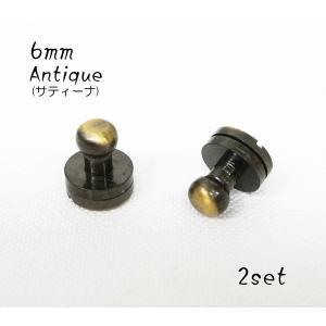 頭径 6mm ギボシ ネジ式 アンティーク 2個セット kume216