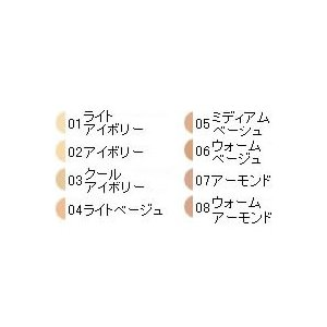 エクストラフォーミュラ 06ウォームベージュ カバーマーク - 定形外送料無料 -wp|kumokumo-square