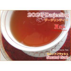2020ダージリン夏摘み3茶園セット kumorizora