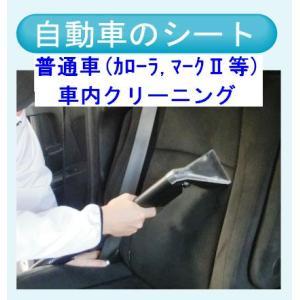 車内クリーニング(普通車) 出張洗浄サービス【対応地域限定】【代金引換】|kunidenbousai