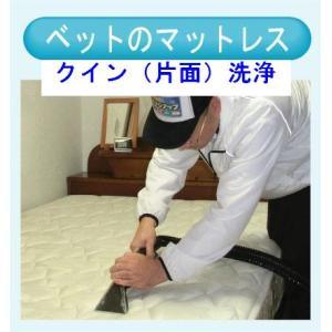 マットレスのクリーニング(クイン片面) 出張洗浄サービス【対応地域限定】【代金引換】|kunidenbousai