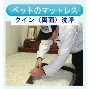 マットレスのクリーニング(クイン両面) 出張洗浄サービス【対応地域限定】【代金引換】|kunidenbousai