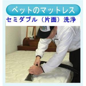 マットレスのクリーニング(セミダブル片面) 出張洗浄サービス【対応地域限定】【代金引換】|kunidenbousai