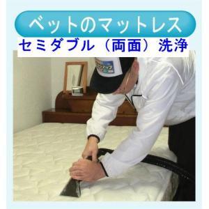 マットレスのクリーニング(セミダブル両面) 出張洗浄サービス【対応地域限定】【代金引換】|kunidenbousai