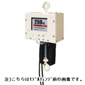 スリーエッチ 電気チェーンブロック(揚程6m) ES250kg×6m [JC250kg×6mからモデルチェンジ]|kunimotohamono
