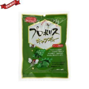 プロポリス キャンディー のど飴 森川健康堂 プロポリスキャンディー 100g 送料無料 kunistyle