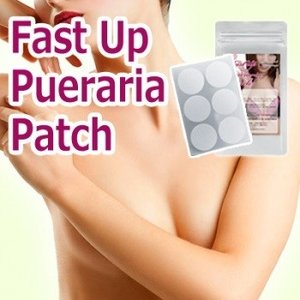 ast Up Pueraria Patch ファストアッププエラリアパッチ 30枚 送料無料|kunistyle