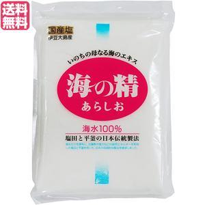 塩 粗塩 あら塩 海の精 海の精 あらしお 500g 送料無料|kunistyle
