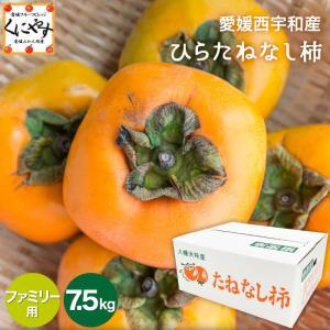 「ファミリーひらたね7.5」柿 愛媛産 平核無 ひらたねなし 柿 ファミリー用 7.5kg 送料無料|kuniyasu-seika