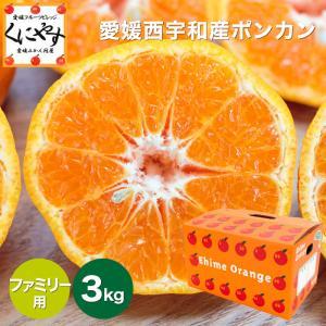 「ファミリー愛媛ポンカン3」【送料無料】愛媛ポンカンファミリー用3kg見た目綺麗なので贈答OK kuniyasu-seika
