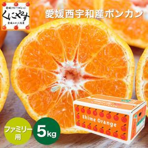 「ファミリー愛媛ポンカン5」【送料無料】愛媛ポンカンファミリー用5kg見た目綺麗なので贈答OK kuniyasu-seika