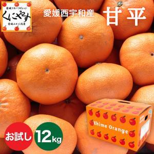 「お試し甘平3×4」【送料無料】お試し,数量限定愛媛甘平(かんぺい)12kg(3kg×4箱),せとかにも匹敵する柑橘 kuniyasu-seika