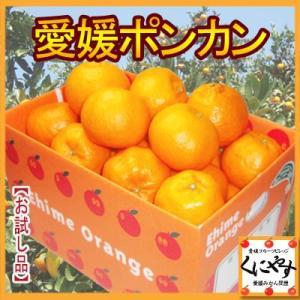「お試し愛媛ポンカン3×4」【送料無料】【お試し品】愛媛ポンカン12kg(3kg×4箱)手でむいてみかんのようにパクパク内皮も一緒に食べられる手軽さで大人気 kuniyasu-seika