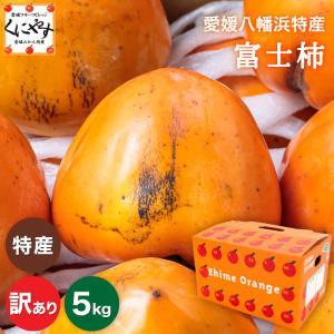 「訳あり富士柿3×2」富士柿 6キロ(3キロ×2箱) 大きさ不揃い 訳あり 柿,のしギフト対応不可|kuniyasu-seika