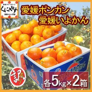 「訳ポンカンいよかん5×2」【送料無料】訳あり愛媛ポンカンといよかんセット10kg(各5kg×2箱),のしギフト対応不可 kuniyasu-seika