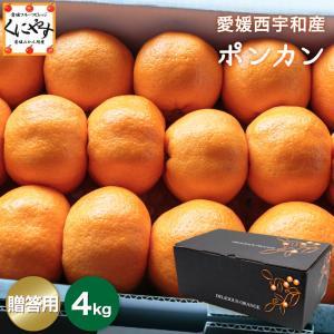 「贈答愛媛ポンカン4」【送料無料】愛媛ポンカン贈答用4kg(Lサイズ約30個入り) kuniyasu-seika