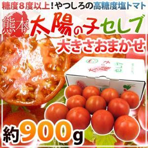"""【送料無料】熊本産 塩トマト """"太陽の子セレブ"""" 約900g..."""