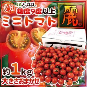 野菜ソムリエサミットで大賞を受賞したミニトマト「麗(れい)」糖度9度以上の高糖度で、フルーツやスイー...