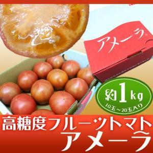 """静岡県産 """"高糖度フルーツトマト アメーラ"""" 10〜20個前..."""