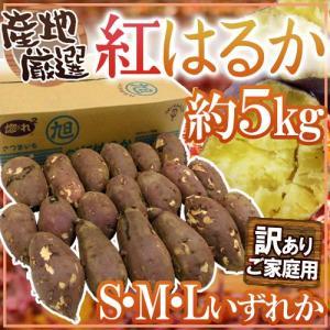 """【送料無料】訳あり """"紅はるか"""" S・M・Lサイズ 約5kg..."""