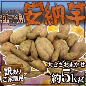 """【送料無料】種子島産 訳あり""""安納芋"""" 約5kg 大きさおま..."""