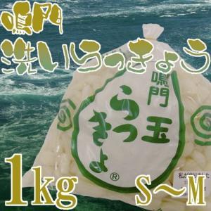 """徳島 鳴門産 """"洗いらっきょう"""" 秀品 S/Mサイズ 約1kg《5キロ購入で送料無料》【予約 5月下旬以降】 kurashi-kaientai"""