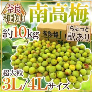 【送料無料】トップブランド・和歌山産とそれに負けない品質!奈良産の「南高梅」フルーティーな香りと肉厚...