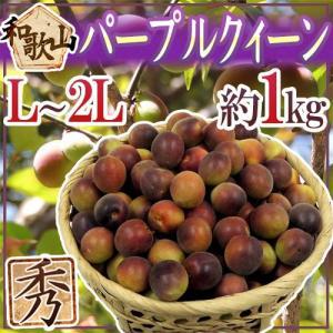 ハっとするほどの濃い紫色に染まる小梅・パープルクイーン。梅酒や梅ジュースを漬けるとピンク色に染まりま...