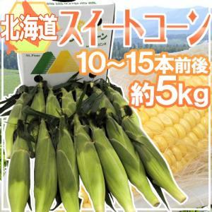 "北海道産 ""スイートコーン"" 10〜15本前後 約5kg【予約 8月中下旬以降】|kurashi-kaientai"