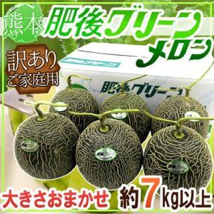 """【送料無料】熊本産 """"肥後グリーン"""" 大きさおまかせ 約7k..."""