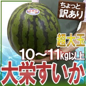 """【送料無料】鳥取県 """"ジャンボ大栄すいか"""" ちょっと訳あり ..."""