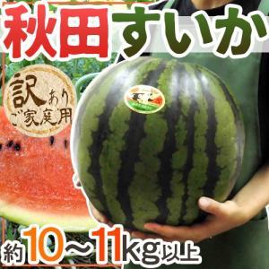 """【送料無料】秋田県 """"秋田すいか"""" 訳あり 約10〜11kg..."""