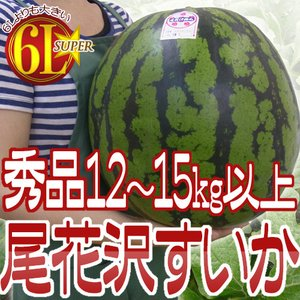 """【送料無料】山形県産 """"尾花沢スイカ"""" 6L★(7L級) 1..."""